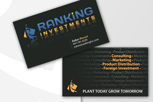Ranking Investments
